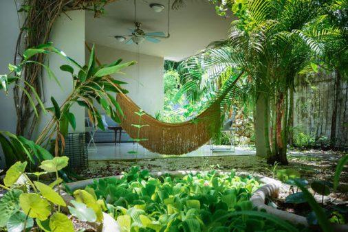 casa pajaro for sale cozumel